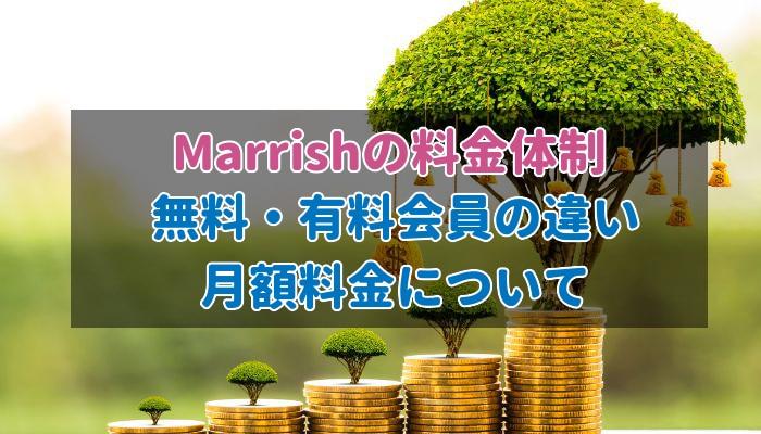 Marrishの料金システムを紹介